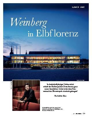 Weinberg in Elbflorenz