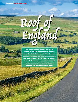 Roof of England