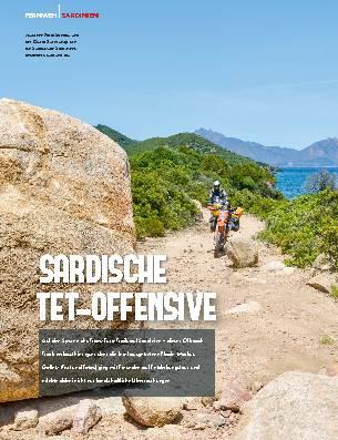 SARDISCHE TET-OFFENSIVE