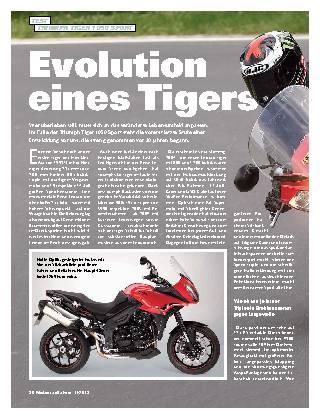 Evolution eines Tigers