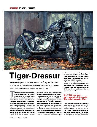 Tiger-Dressur