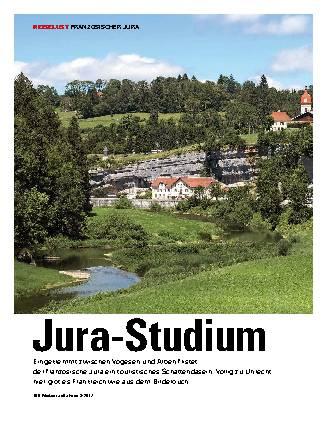 Jura-Studium