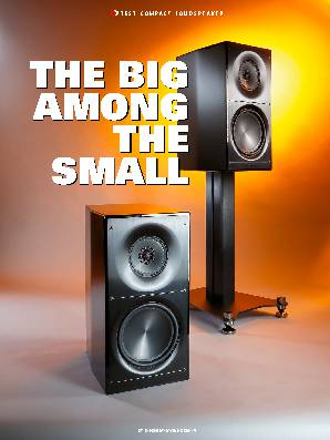 THE BIG AMONG THE SMALL