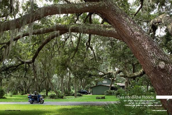 Florida - Die Unvollendete