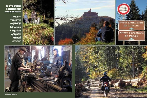 Frankreich: Auf Waldwegen durch die Vogesen – Kleinvieh macht auch Mist