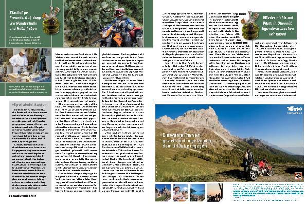 Toskana: Die Suche nach dem Olivenöl – In olio veritas