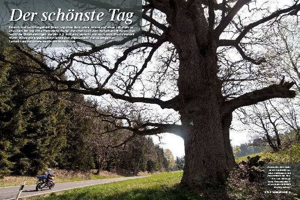 Deutschland: Alltagsflucht im Spessart – Der schönste Tag