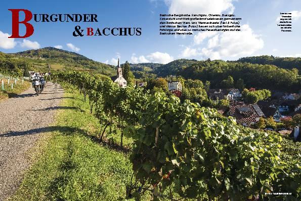 Burgunder & Bacchus