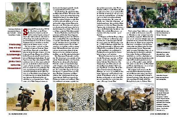 Safari mit Tiger